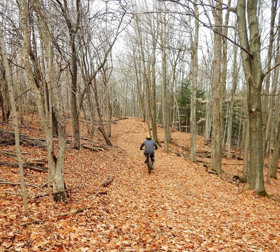 Local Trail Rides-15193693_1844706279107148_6951383233673849879_n.jpg