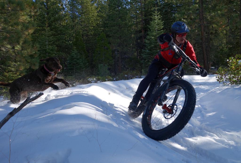 Weekend Ride Report November 25th - 27th-15252546_10154848562089903_3685513449241849811_o.jpg
