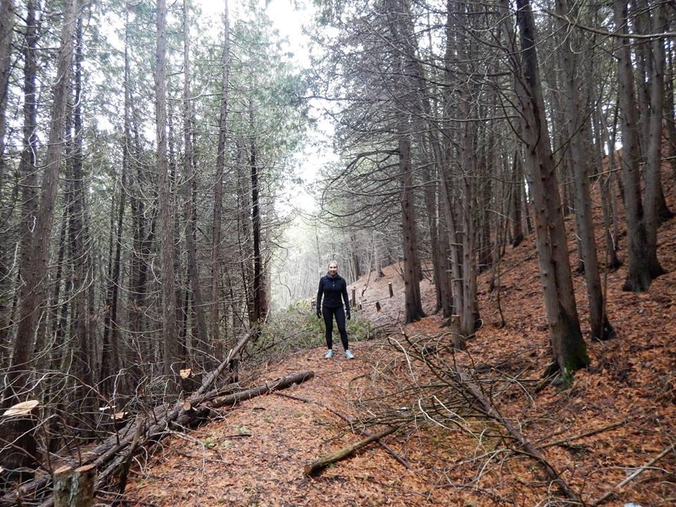Local Trail Rides-15253458_1844710819106694_2791103425409267031_n.jpg