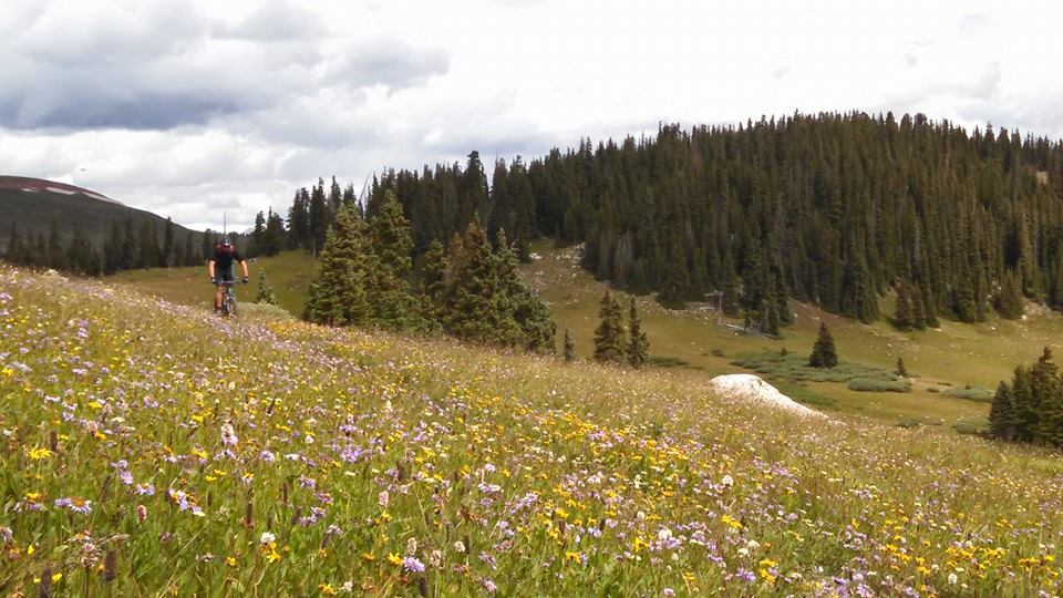 Colorado Trail Summer 2014:  An invitation (X-Post from Vacations)-1526965_10152662457157838_9004376567598614846_n.jpg