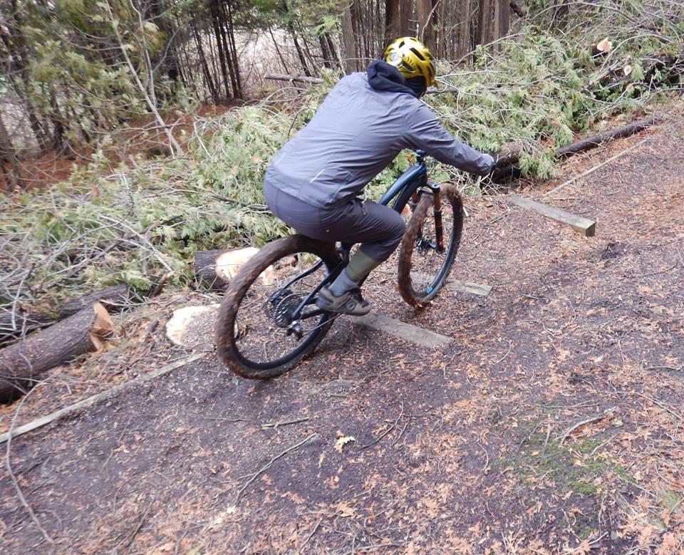 Local Trail Rides-15284042_1844704165774026_4912776259709365125_n.jpg