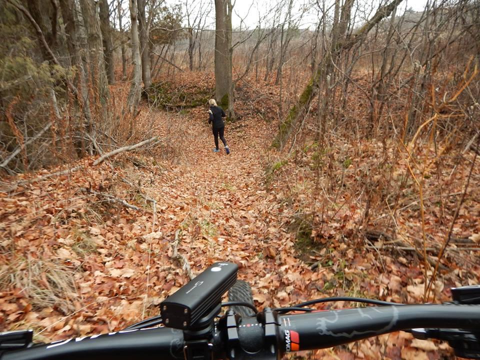 Local Trail Rides-15317936_1848737218704054_6677716260283779739_n.jpg