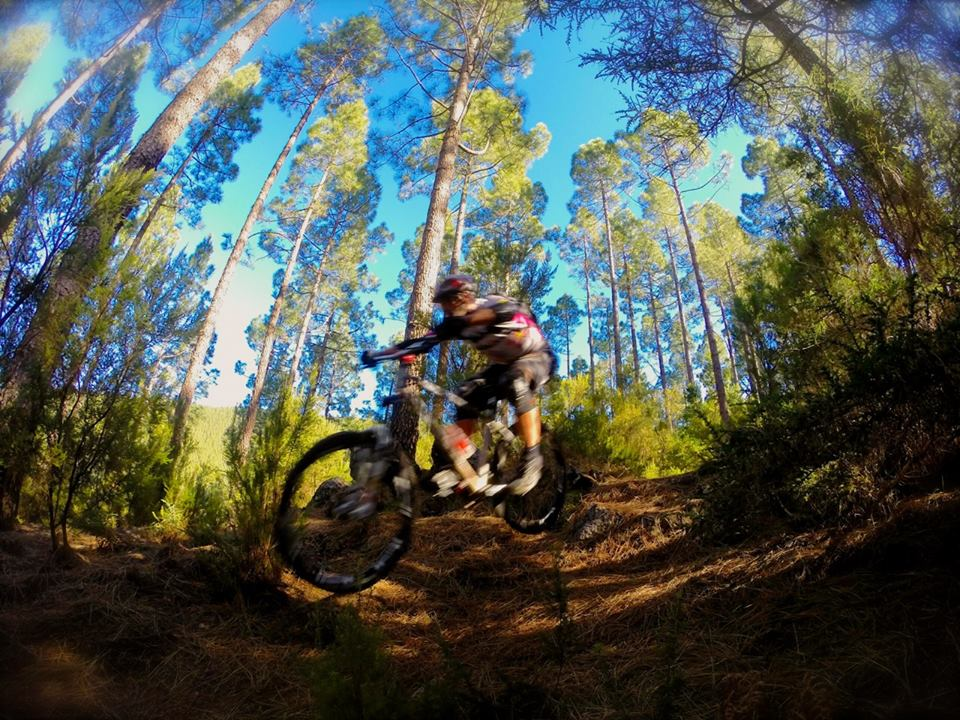 Mountain biking in Tenerife, Canary Islands-1532060_593804787380294_704958398_n.jpg