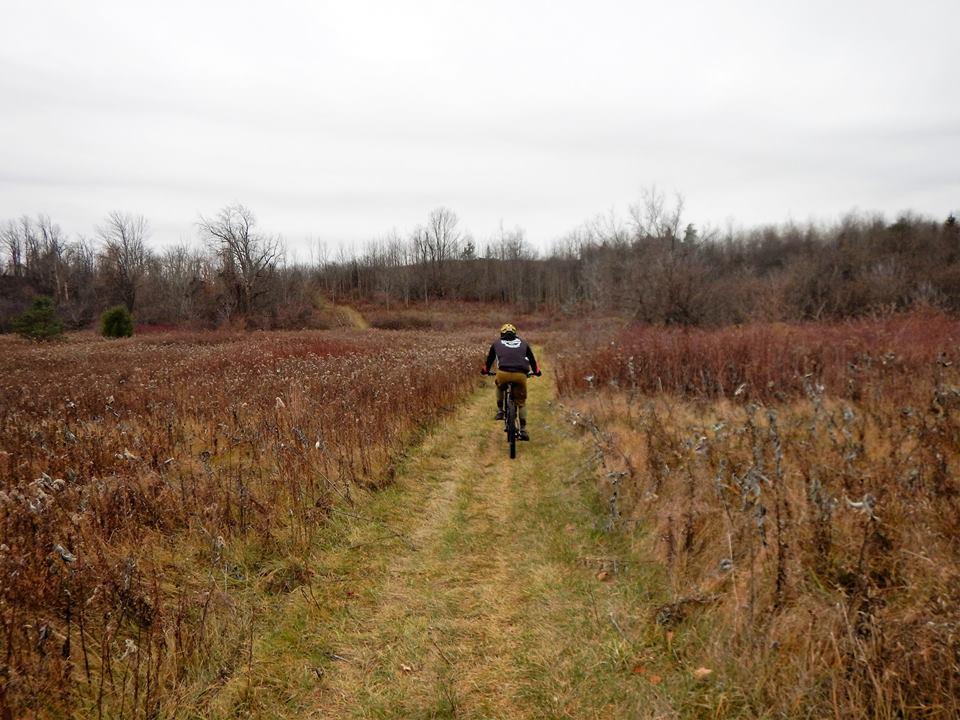 Local Trail Rides-15337566_1848737922037317_3969108917000377947_n.jpg