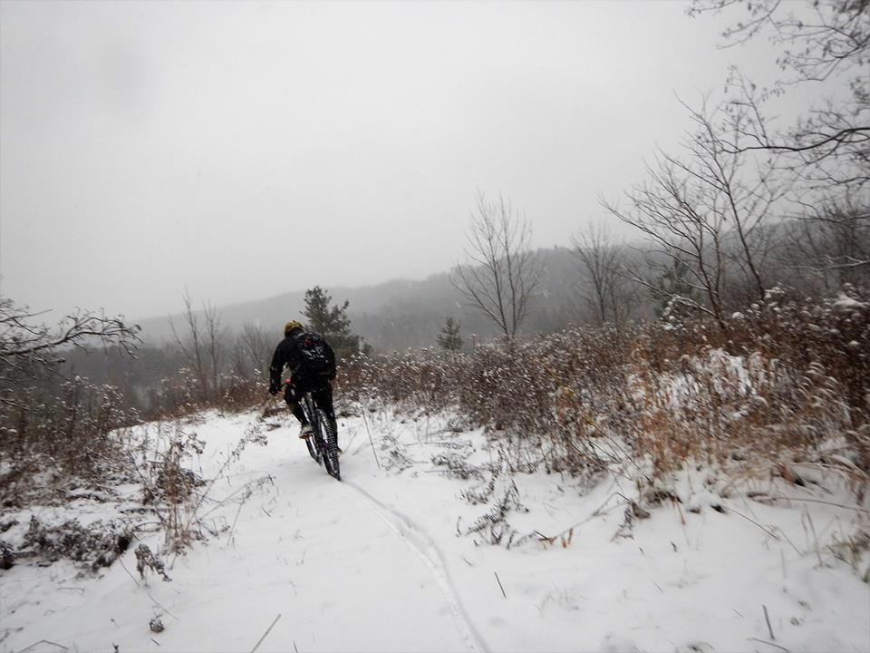 Local Trail Rides-15390847_1852644921646617_1442267731585219707_n.jpg