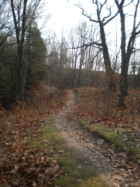 Wisconsin Trail Photos-15469_334867815213_672755213_9936165_2544184_n.jpg