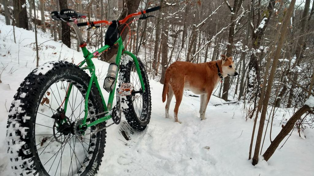 Global Fatbike Day! December 2. Where you riding?-15493615_1407408762626048_6291543257838495801_o.jpg