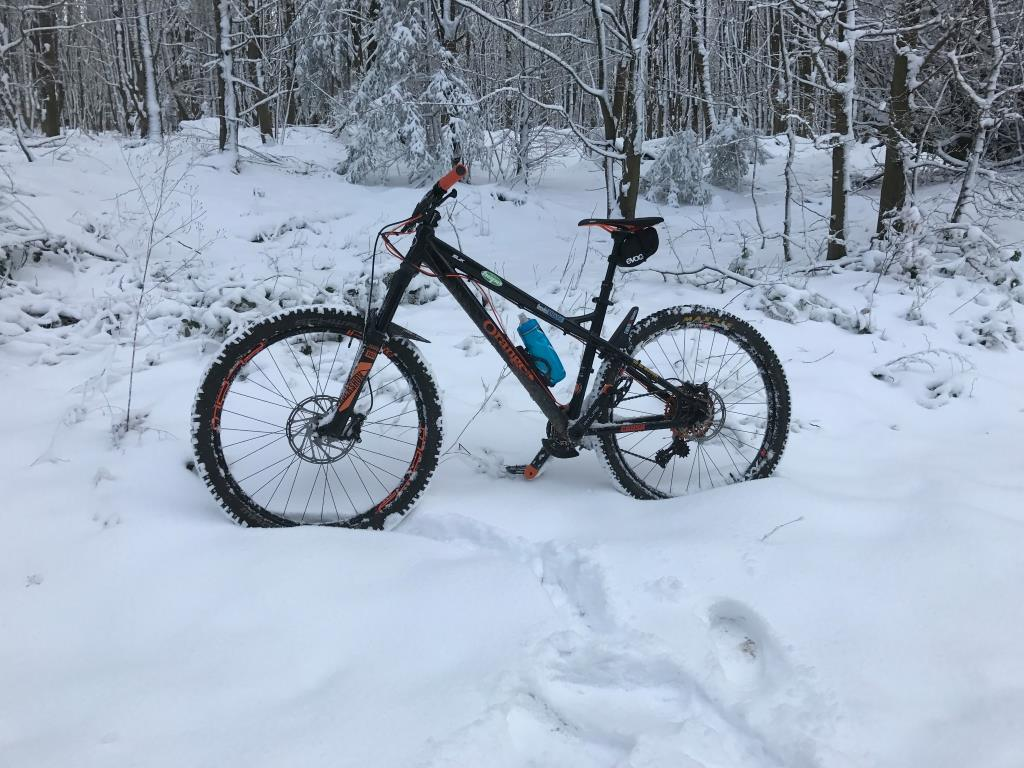 The All Mountain Hardtail Thread. Post up yours.-15972721_10208281738069800_1221263398874001055_o.jpg