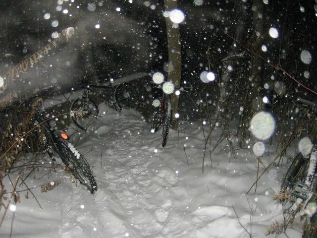 Local Trail Rides-160-6074_img.jpg