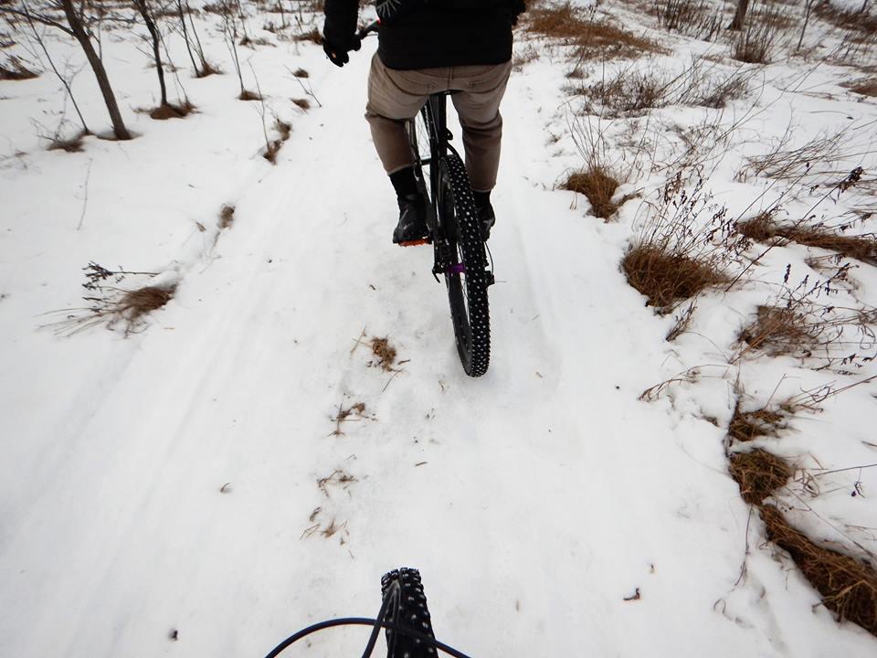 Local Trail Rides-16105622_1868183456759430_3630048002230210610_n.jpg
