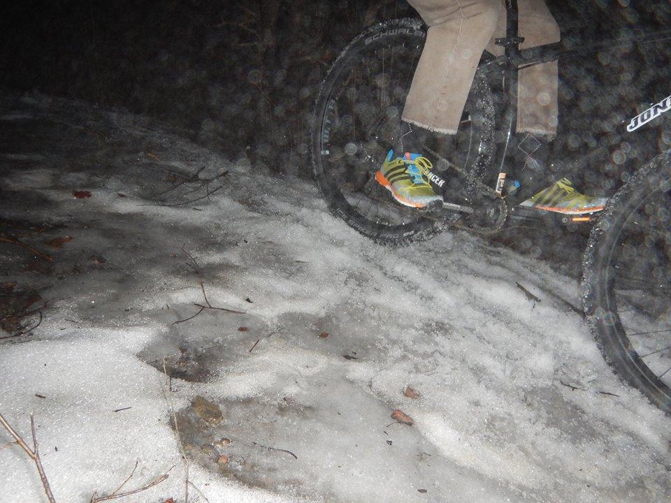 Local Trail Rides-16142649_1871042176473558_3181318818149248500_n.jpg