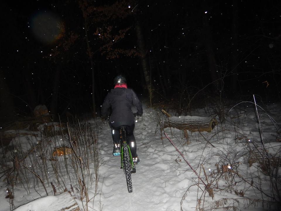 Local Trail Rides-16265962_1874648709446238_6823857133661615080_n.jpg