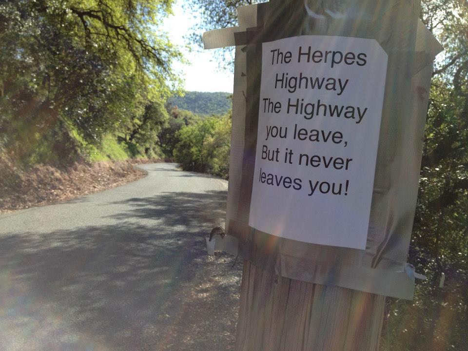 Bike + trail marker pics-1629_10200427732408752_2096329897_n.jpg