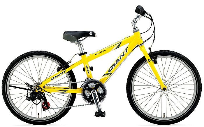 "would yall consider a 22"" wheel MTB for your kid?-1643.jpg"