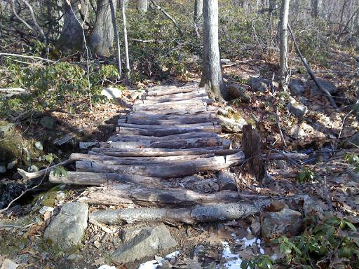 Underrated trails-167985_10150353463150277_881890276_16530811_1240944_n.jpg
