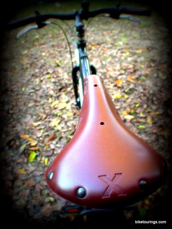 Anyone using a Selle Anatomica saddle??-1681351_orig.jpg