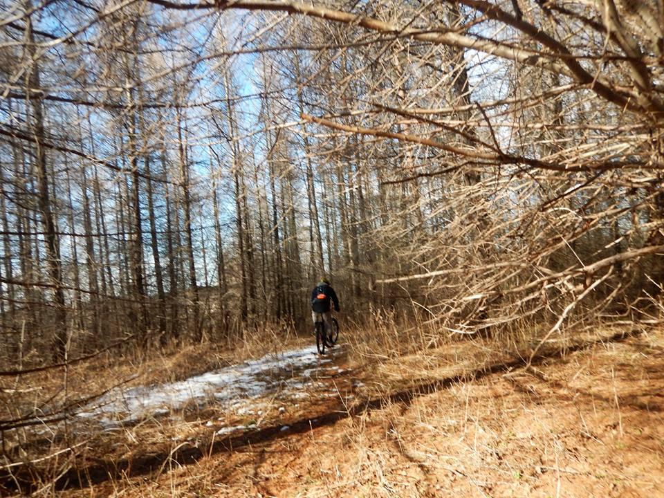 Local Trail Rides-16831946_1885522775025498_2880376427354061286_n.jpg