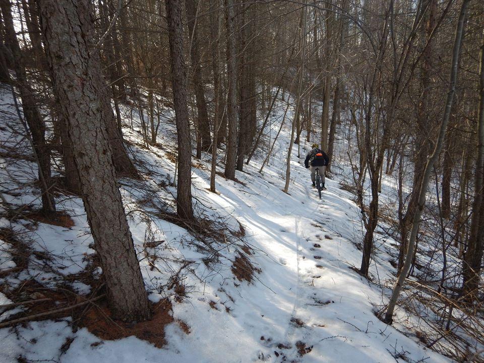 Local Trail Rides-16832402_1885522605025515_4280630780063226117_n.jpg