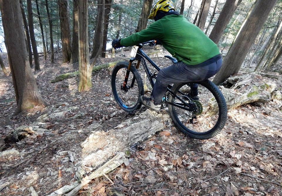 Local Trail Rides-17103730_1891187821125660_1338796890774826251_n.jpg