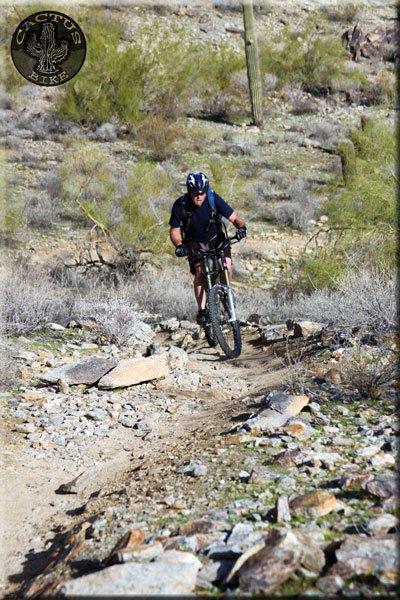 """RSD Bikes """"The Mayor""""-17136_575139464138_1160480_n.jpg"""