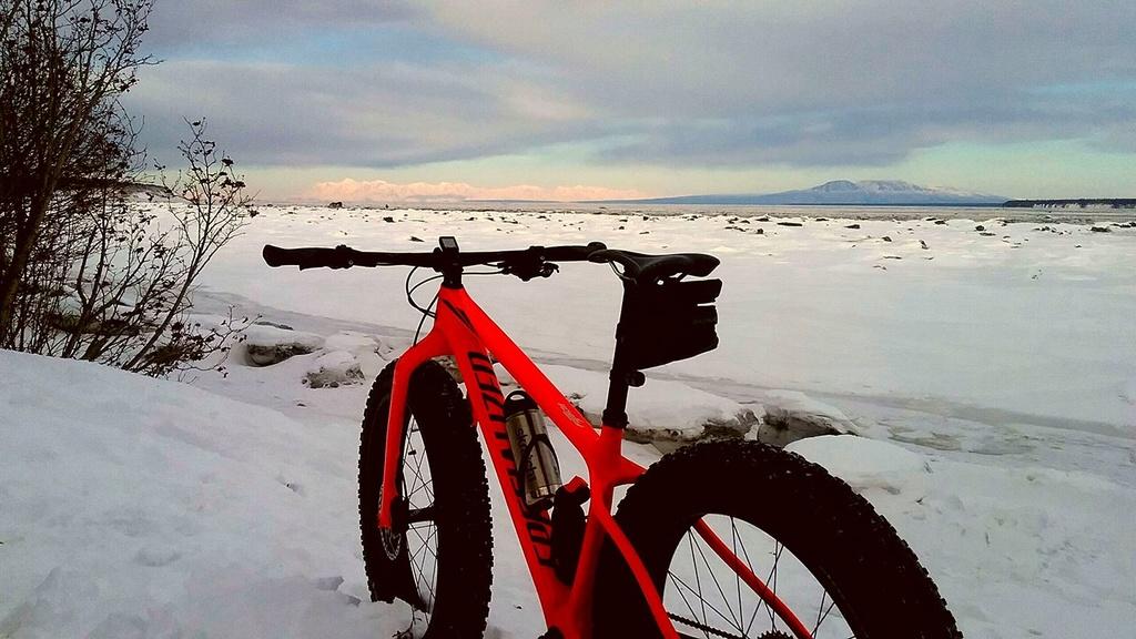 Visiting Anchorage in December-17349745_1605785316101863_555987278415730550_o.jpg