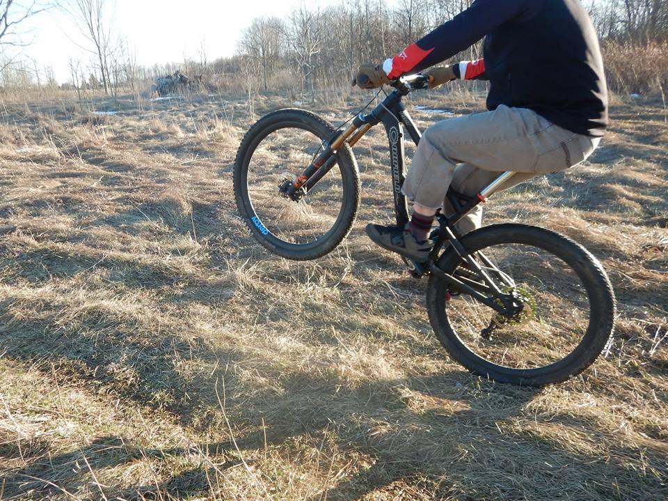 Local Trail Rides-17634380_1908394179405024_8123249021448041985_n.jpg