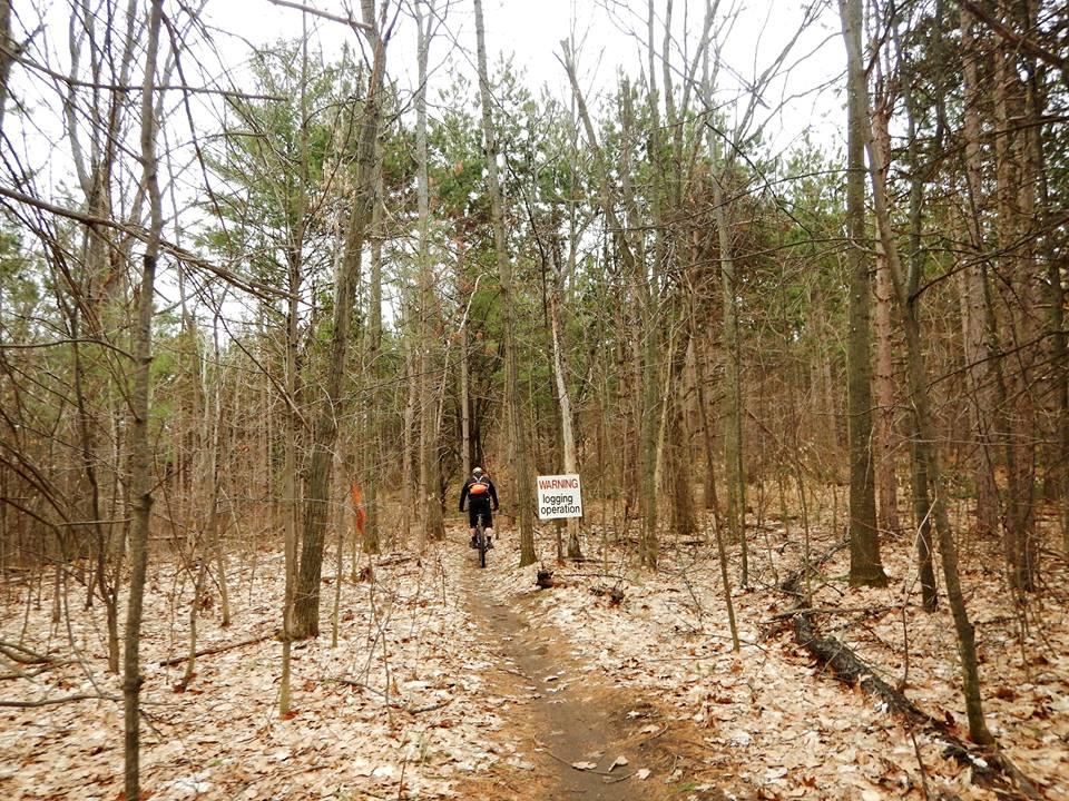 Local Trail Rides-17796656_1905959302981845_3744083724236631890_n.jpg