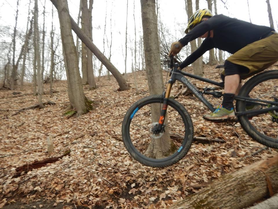 Local Trail Rides-17798910_1905960636315045_5911079544403927237_n.jpg