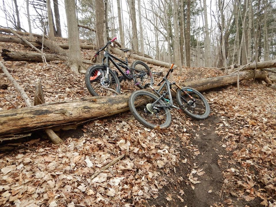 Local Trail Rides-17799007_1905960322981743_4823809409606953521_n.jpg