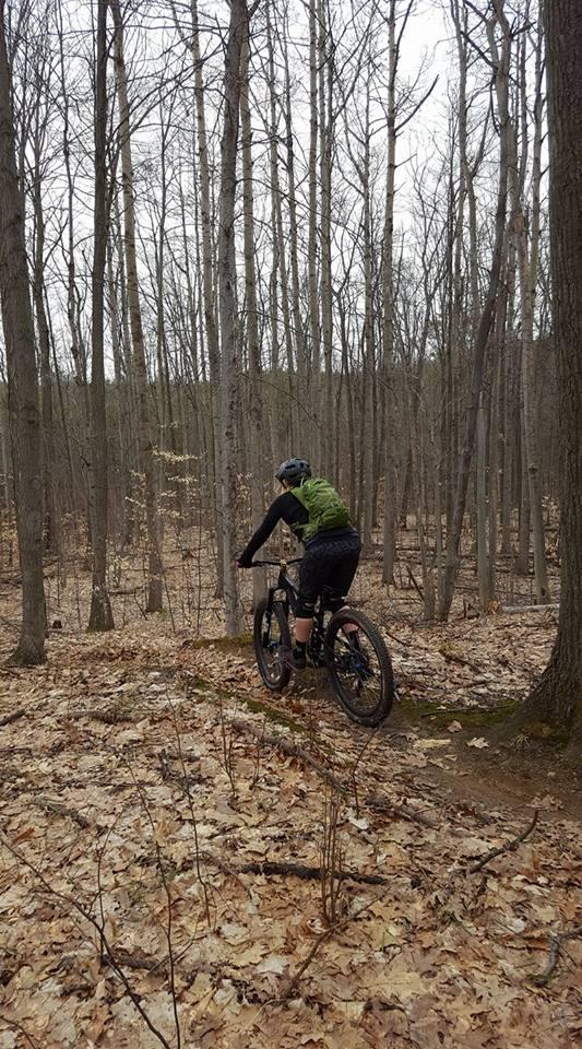 Local Trail Rides-17799162_1129012067227800_845623399505352729_n.jpg
