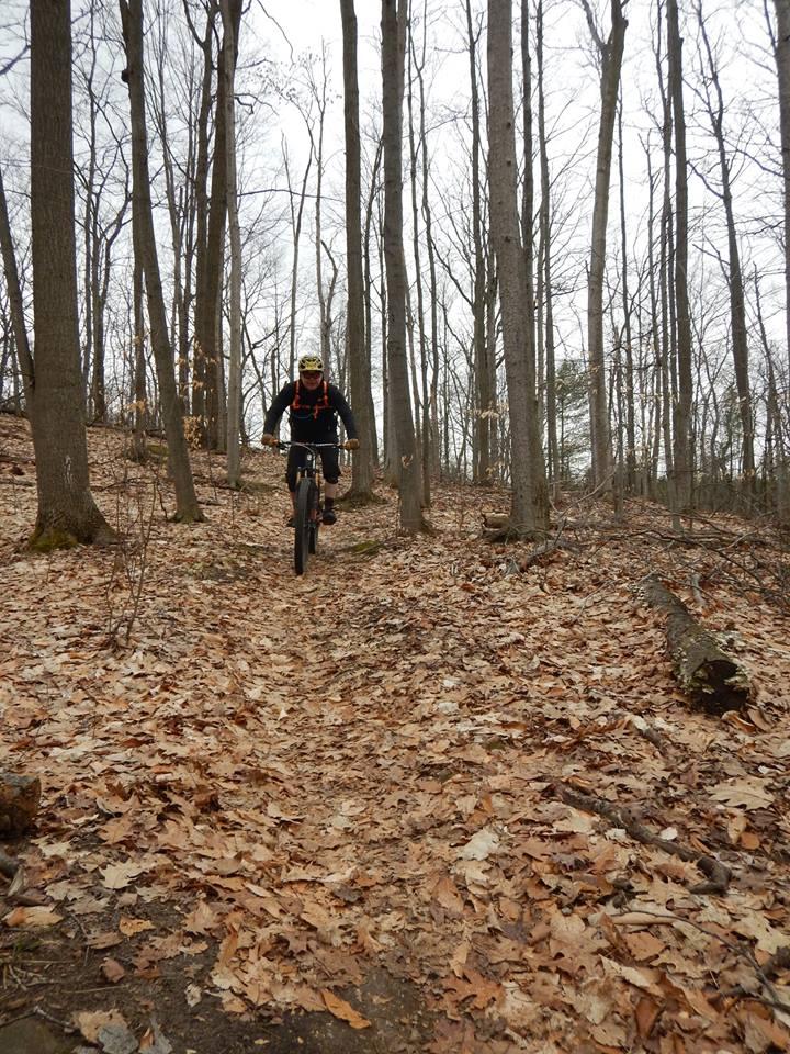 Local Trail Rides-17800250_1905959456315163_6230874745043048098_n.jpg
