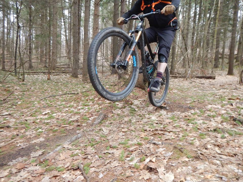 Local Trail Rides-17800326_1905959109648531_5499817503129899076_n.jpg