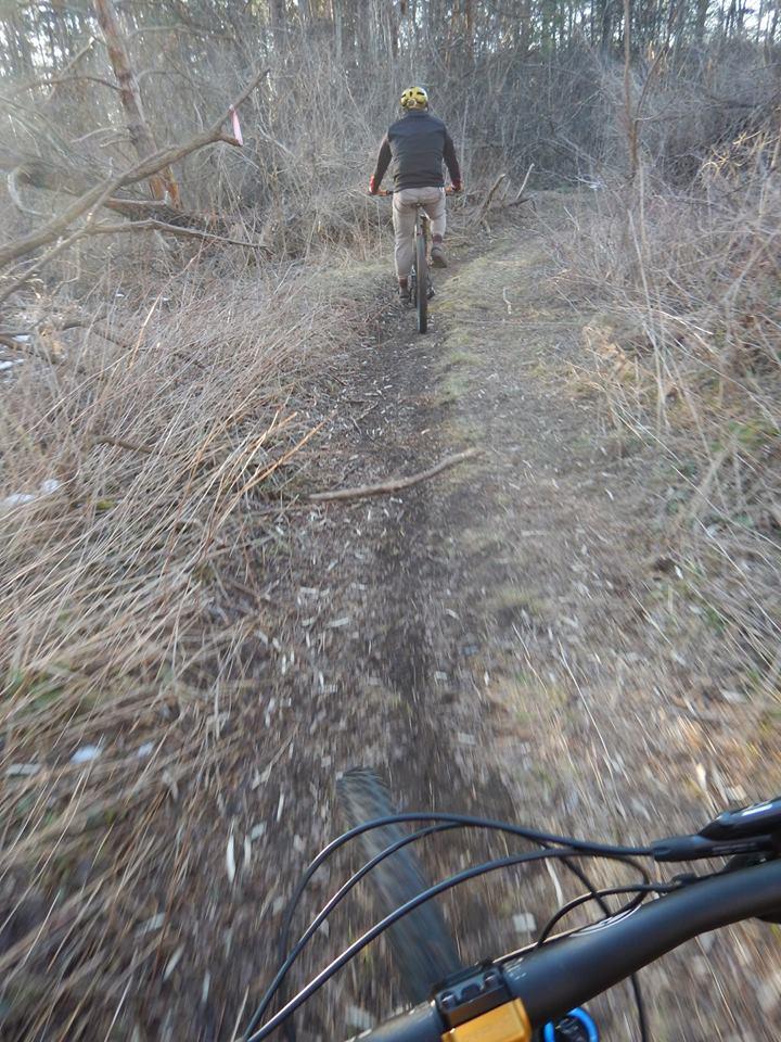 Local Trail Rides-17862619_1908396142738161_3932859430982828993_n.jpg