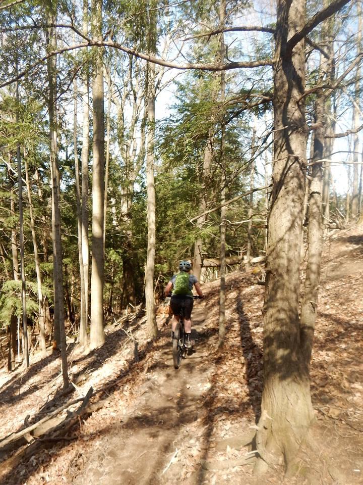 Local Trail Rides-17903542_1911963239048118_117421437448527186_n.jpg