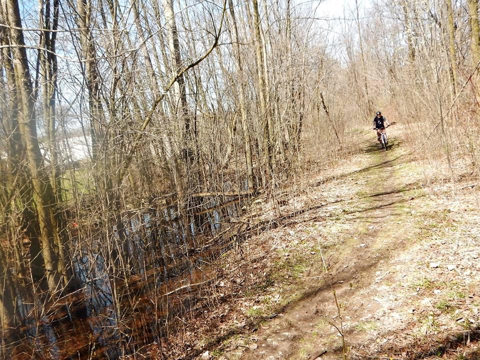 Local Trail Rides-17992141_1916671381910637_2265040066471521891_n.jpg