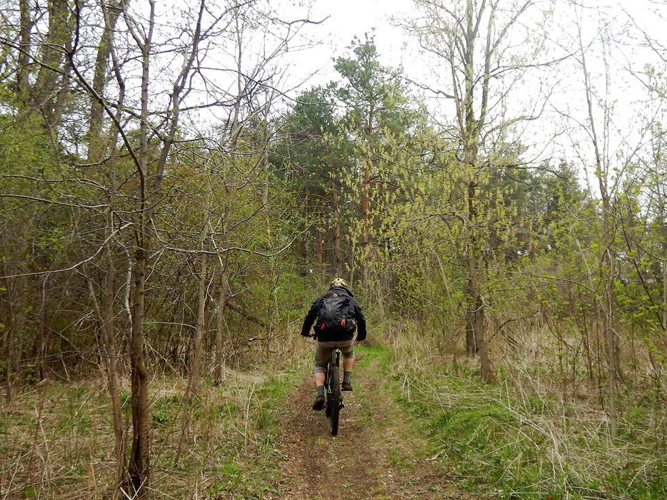 Local Trail Rides-18198274_1920158958228546_4562991293573539248_n.jpg