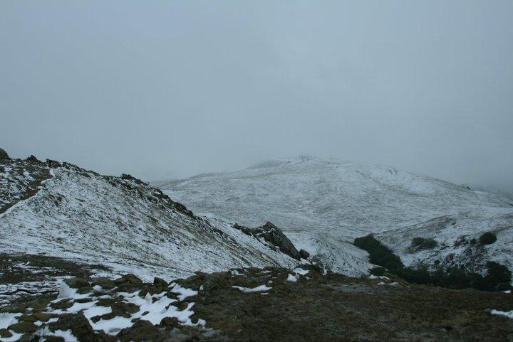 Photo Assignment: Snow-184232_1839143575265_1140780597_32203835_4845579_n.jpg