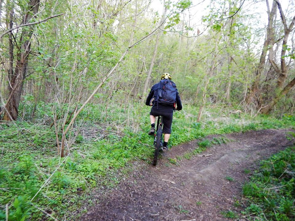 Local Trail Rides-18447436_1926103250967450_3396606374912459252_n.jpg