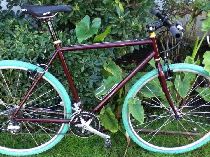 Bike for commuting to work-184704_1616861976866_1095842878_31317907_8261344_n.jpg