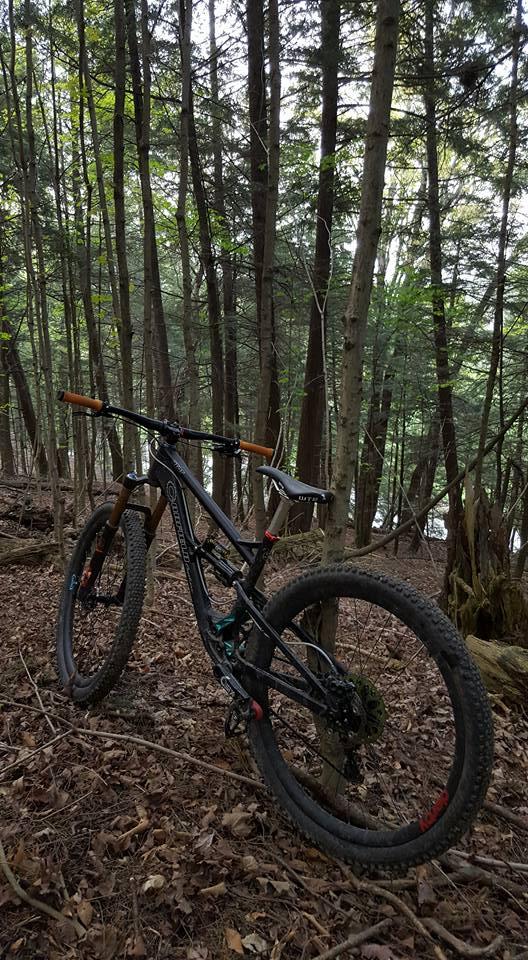 Local Trail Rides-18485819_1174750782653928_8325102613840150688_n.jpg