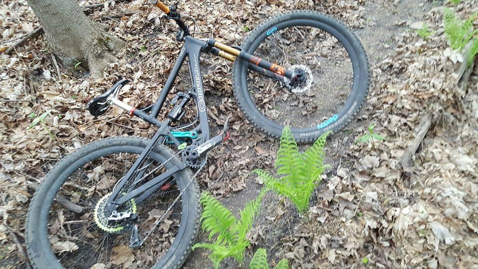 Local Trail Rides-18557124_1174792612649745_7098788195622178704_n.jpg