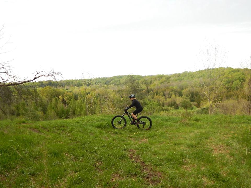 Local Trail Rides-18582359_1929373733973735_5638511832763289803_n.jpg