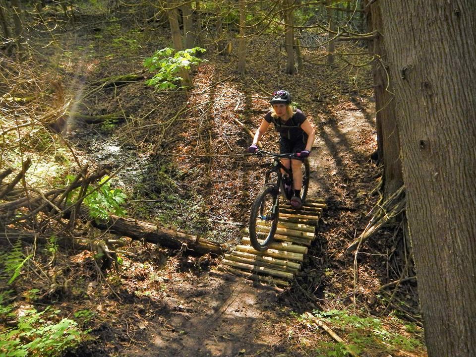 Local Trail Rides-18698044_1933000113611097_6844044360316603156_n.jpg