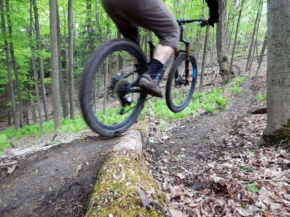 Local Trail Rides-18698392_1930251840552591_1830442643178082581_n.jpg