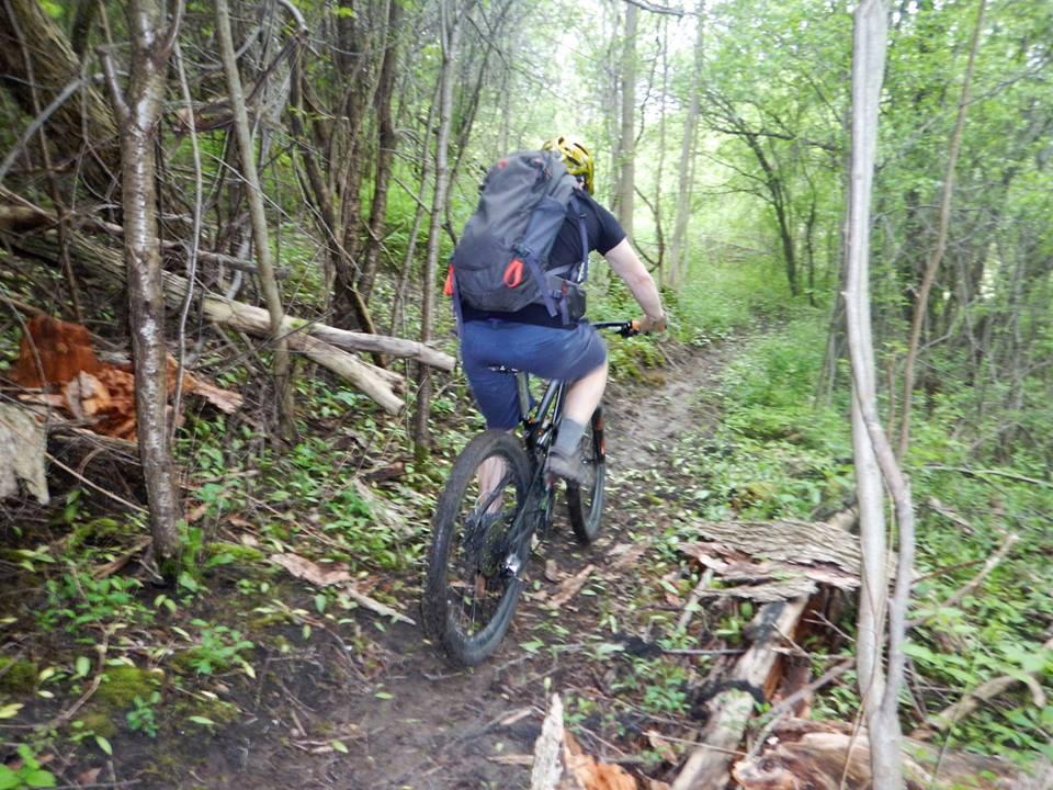 Local Trail Rides-18740623_1932584733652635_5833763507336527075_n.jpg