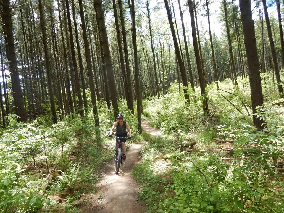 Local Trail Rides-18813590_1935226366721805_4720775004356867242_n.jpg