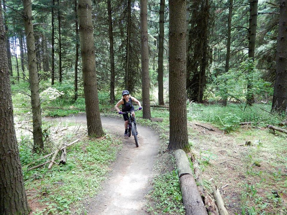 Local Trail Rides-18882067_1935226510055124_4612685992638770850_n.jpg