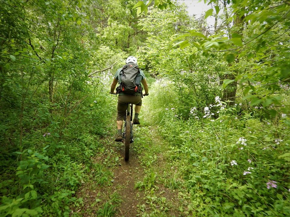 Local Trail Rides-18882278_1936275963283512_2908254243675932317_n.jpg
