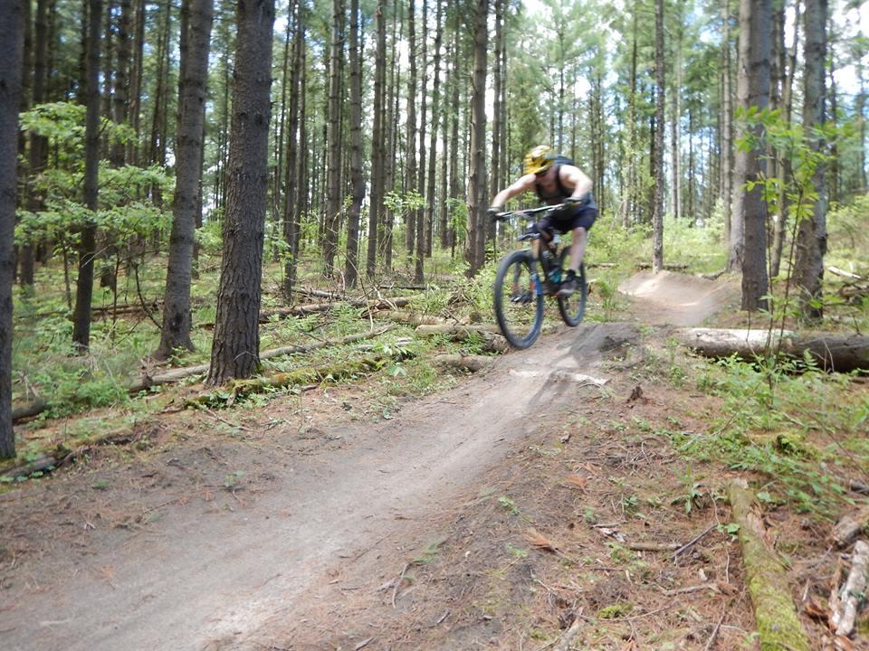 Local Trail Rides-18893079_1935260486718393_7178416632470695043_n.jpg