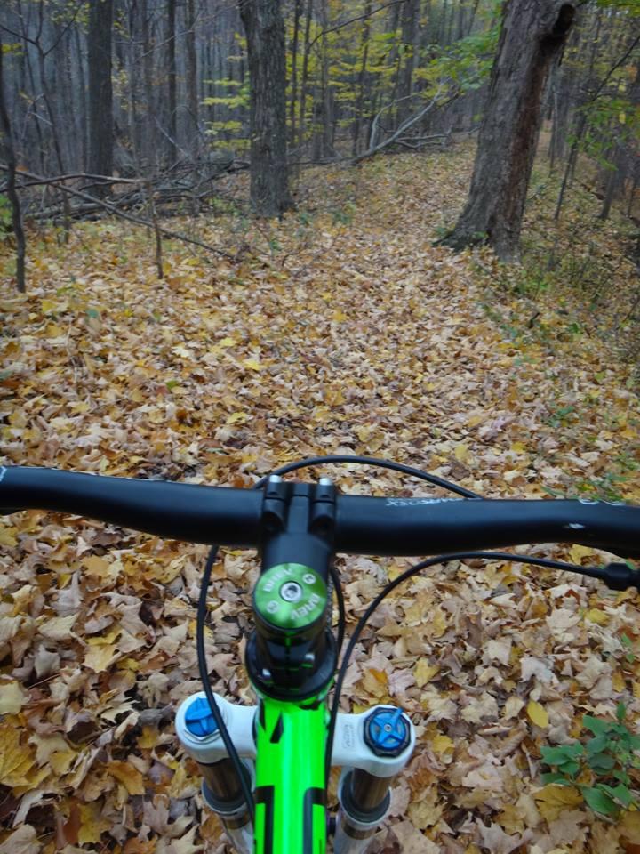 Local Trail Rides-1899988_583795581749454_1567478165283601944_n.jpg